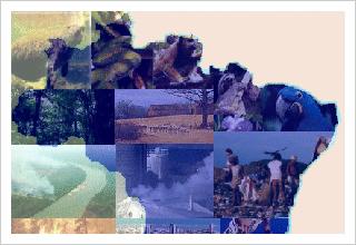 5 de junho – Dia Mundial do Meio Ambiente e da Ecologia